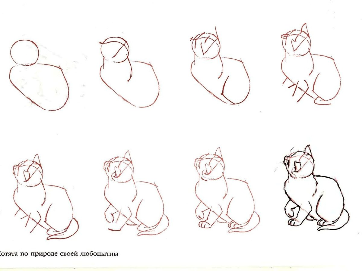 Рисунки по схемам карандашом для начинающих