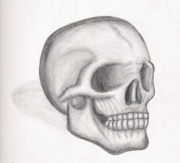 simple skull drawing - 600×541