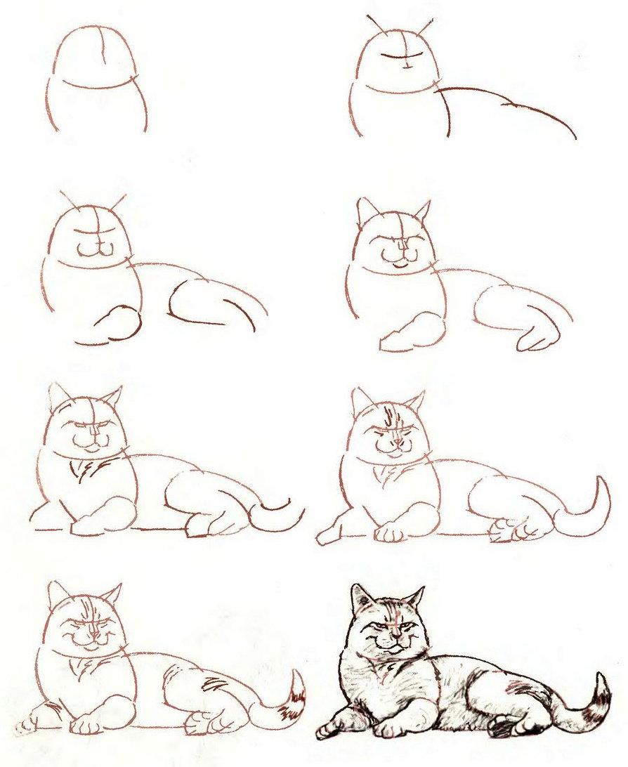 Летию победы, картинки кошки и котята для срисовки