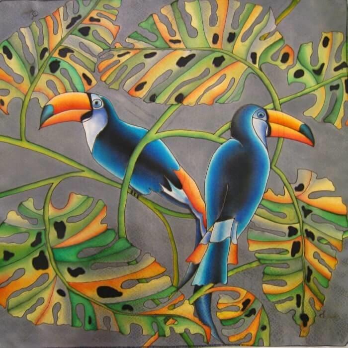 батик птицы тукан является отважным