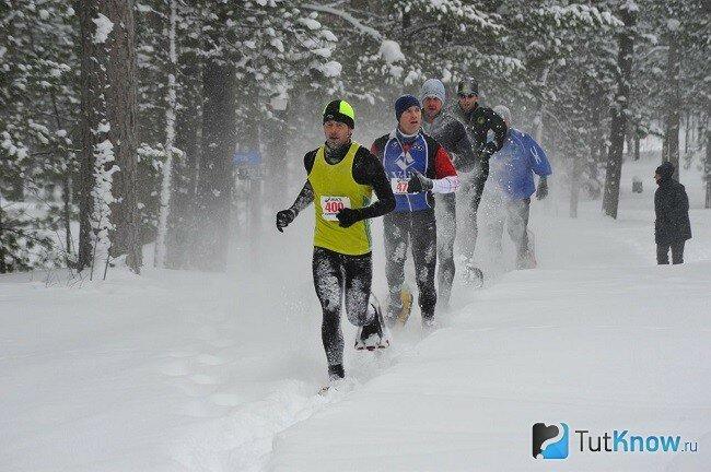Занятия спортом зимой Бегайте в зимний период, если у вас есть проблемы с сезонными депрессиями, то занятия на свежем воздухе минимизируют эти симптомы, так как вы сможете получать достаточное количество солнечного света.
