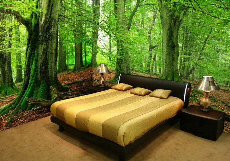 Фотообои природы осени деревьев для оформления интерьера