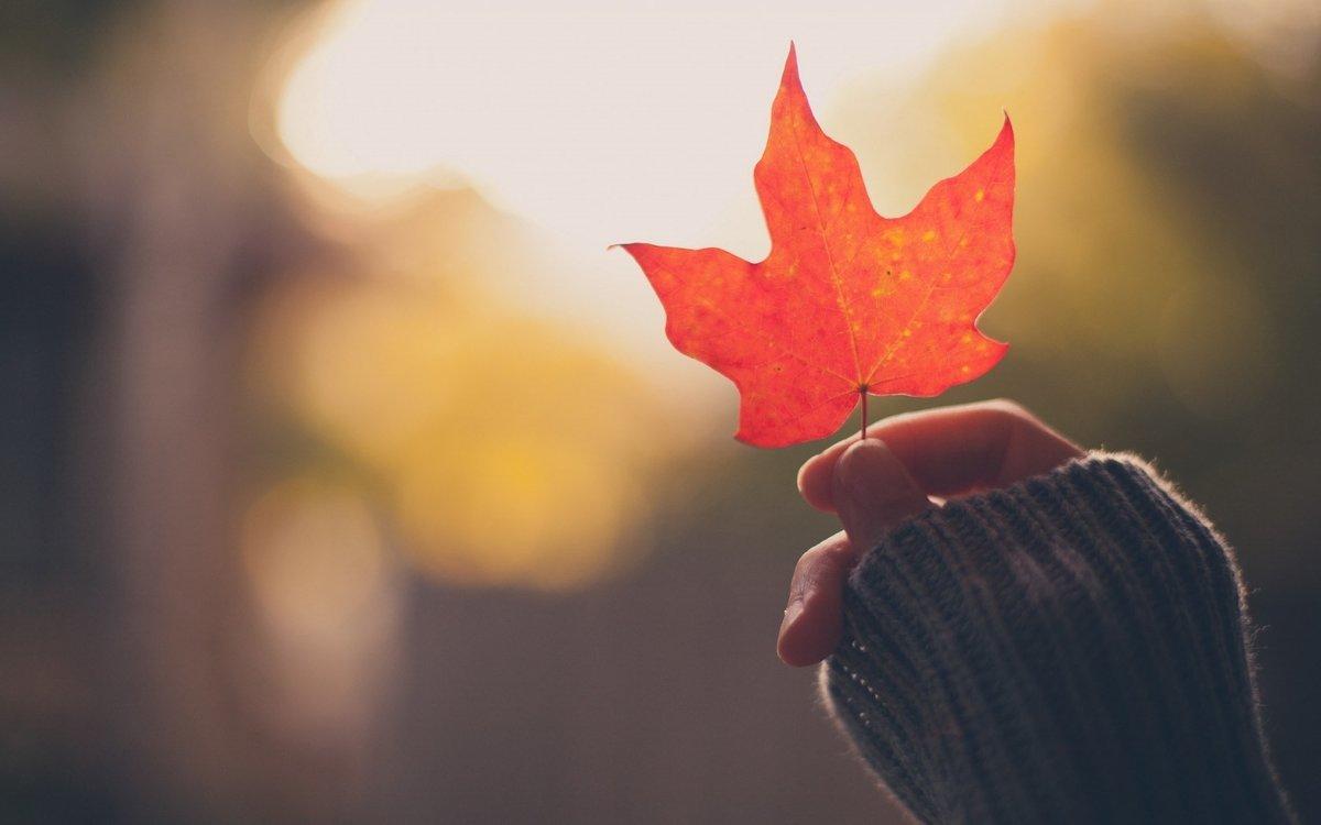 Осень и любовь картинки на аватарку, такое досуг картинки