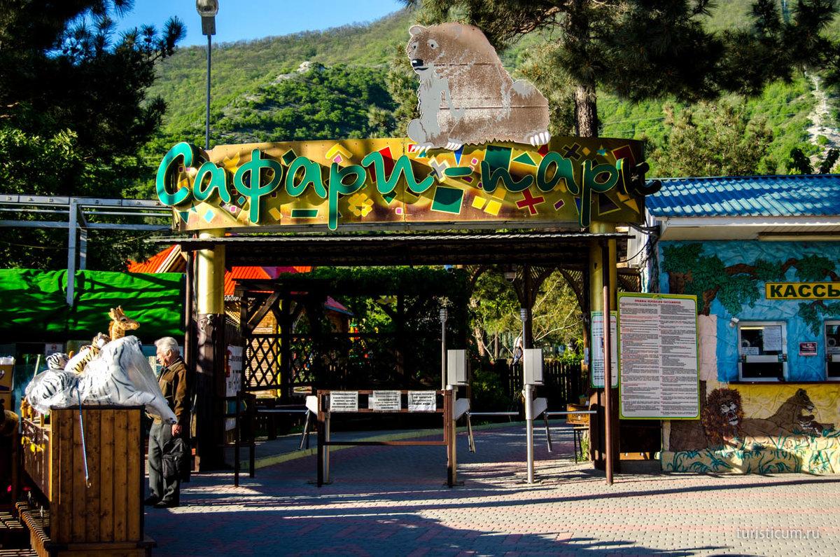 Геленджик сафари парк картинки