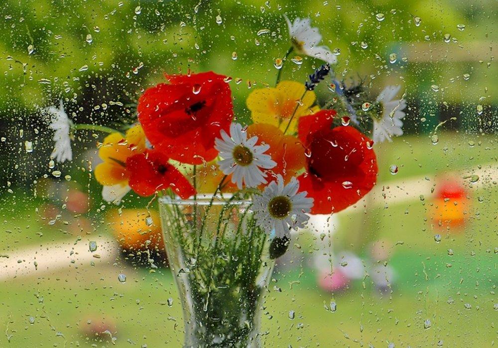 Завтрак, открытки дождь и цветы
