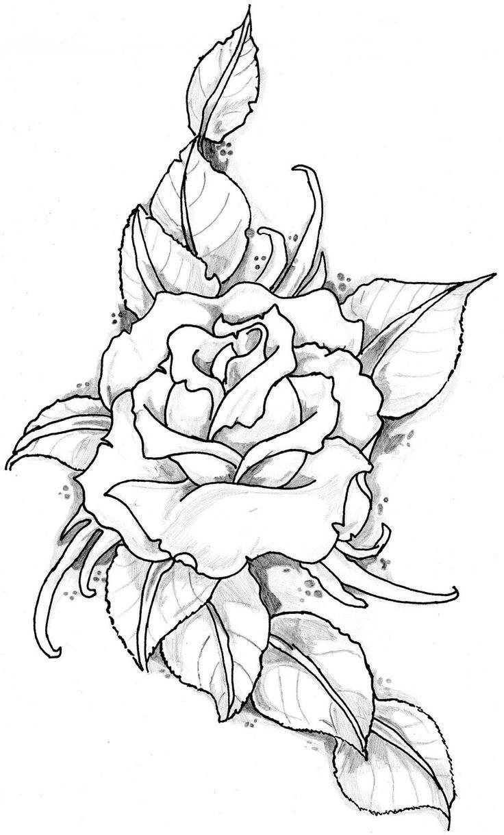 Картинки красивых цветов для срисовки, открытка молодым открытка