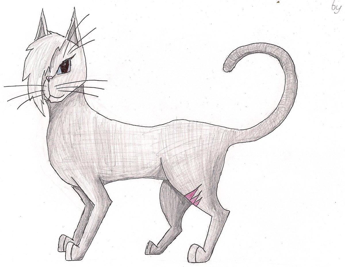 Картинки намальованого котика