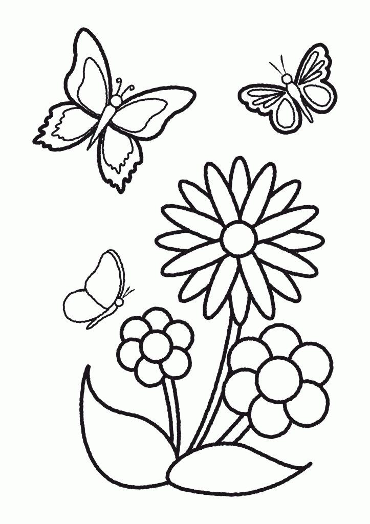 Раскраска бабочки и цветы для детей