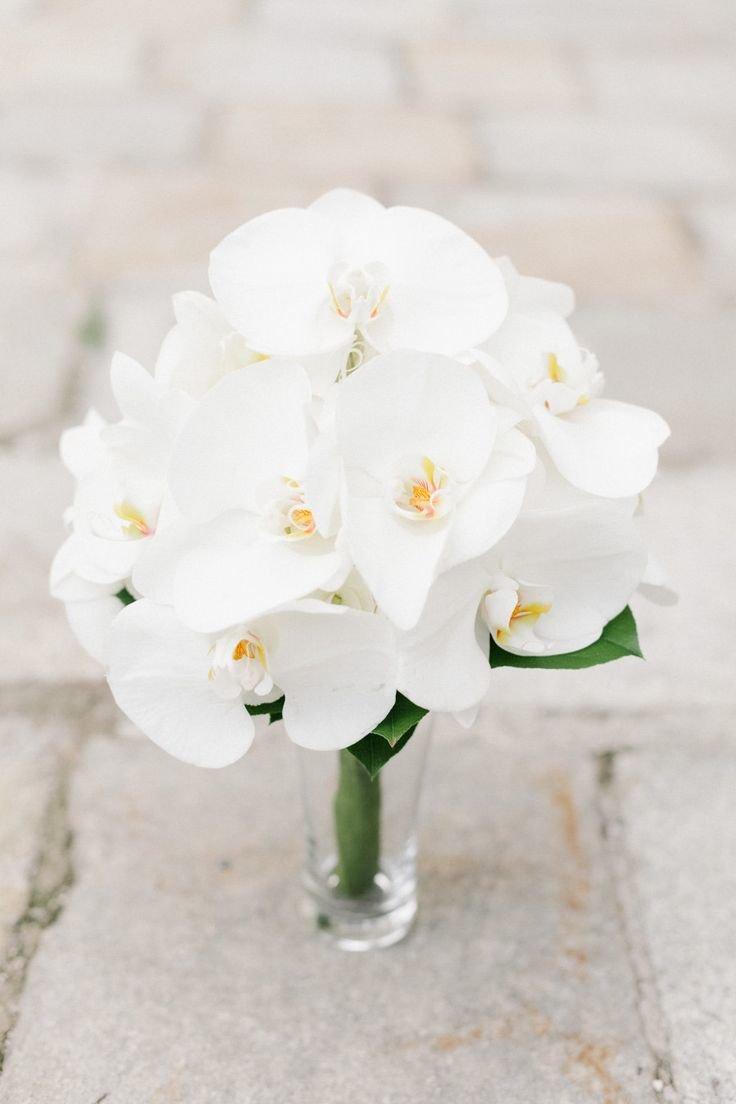 Орхидея фаленопсис в букете