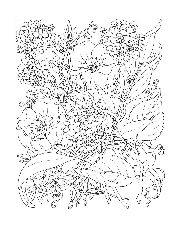 «Раскраска-антистресс цветы» — карточка пользователя Юрий ...