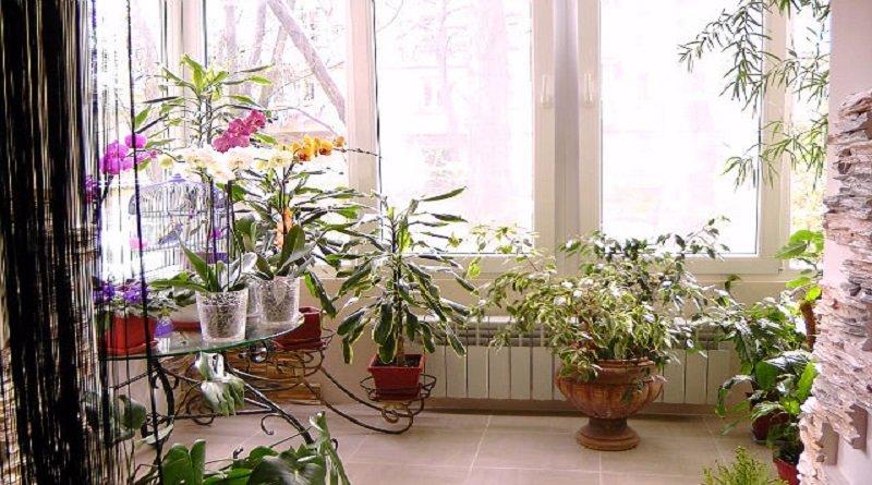 Атмосфера единения с природой позволяет создать комфорт и уют в любой обстановке.
