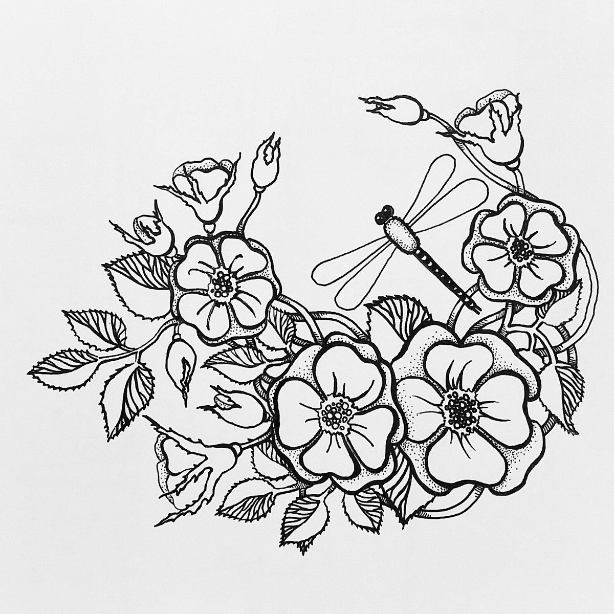 магазин картинки для цветы рисовать продаже