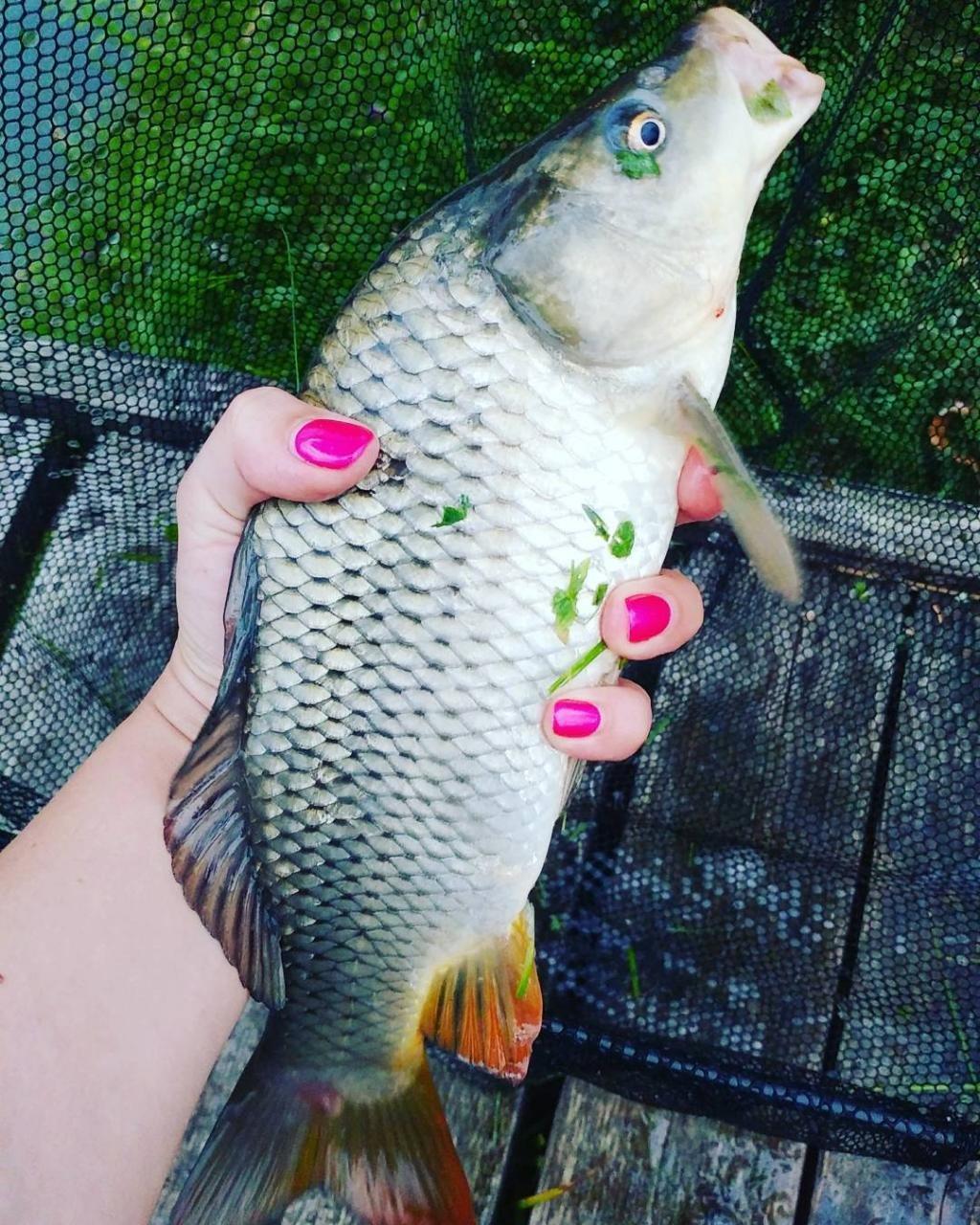 Активатор клева Fish Hungry (Фиш Хангри) — развод Нет Реальные отзывы рыбаков о голодной рыбе
