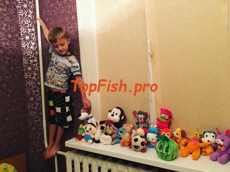 Содержание: Активатор клева Fishhungry — отзывы ⇩. http://topfish ...