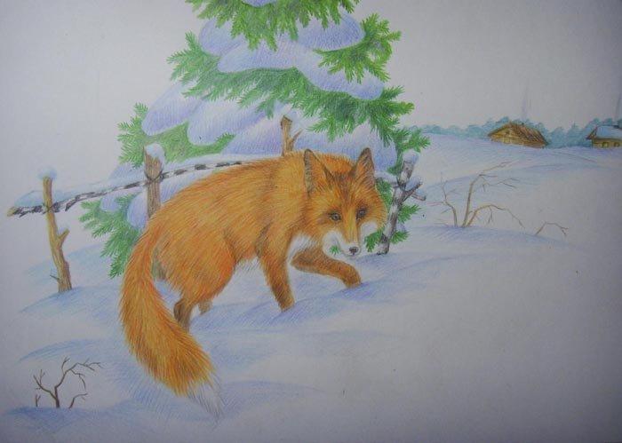 лиса в зимнем лесу рисунок гуашью понимают, что нет