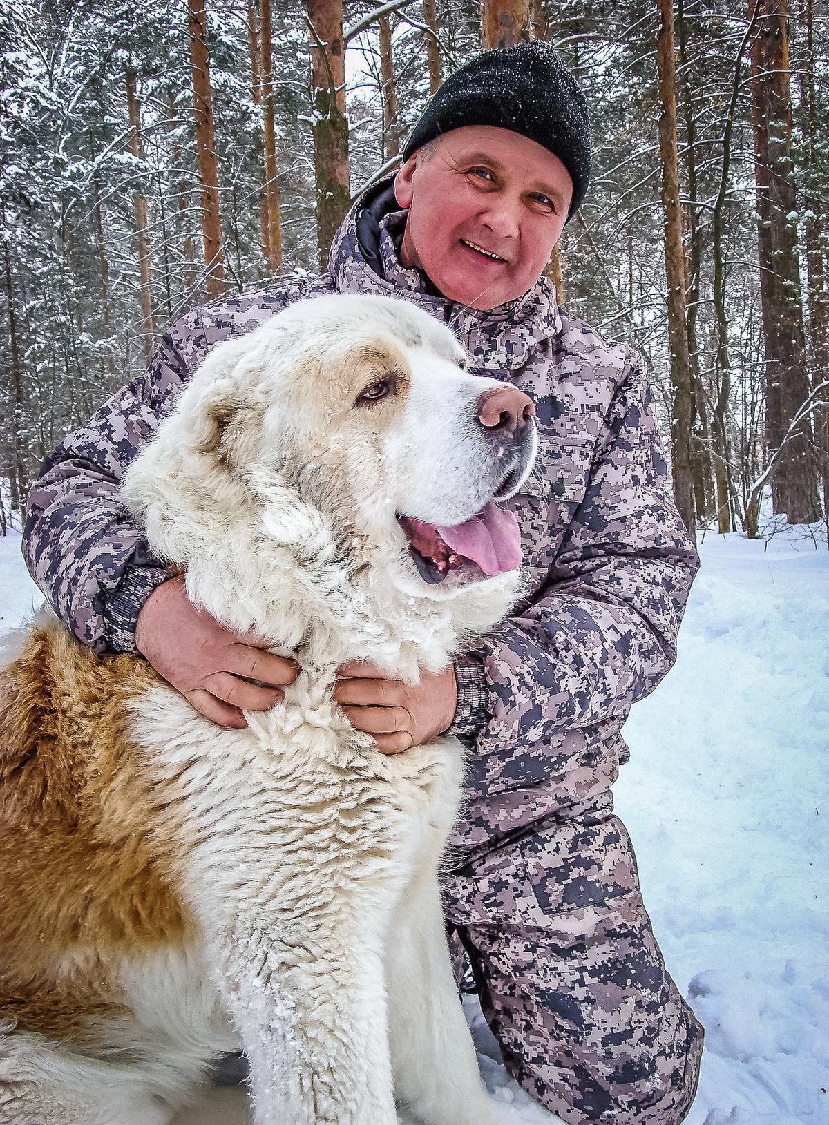 правило, фото алабаев с человеком одной большой