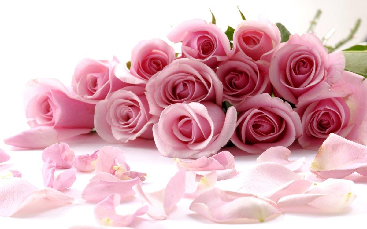 Роскошный букет роз картинка для nokia » nokia портал.
