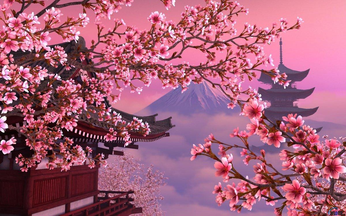 Днем рождения, картинки японской сакуры