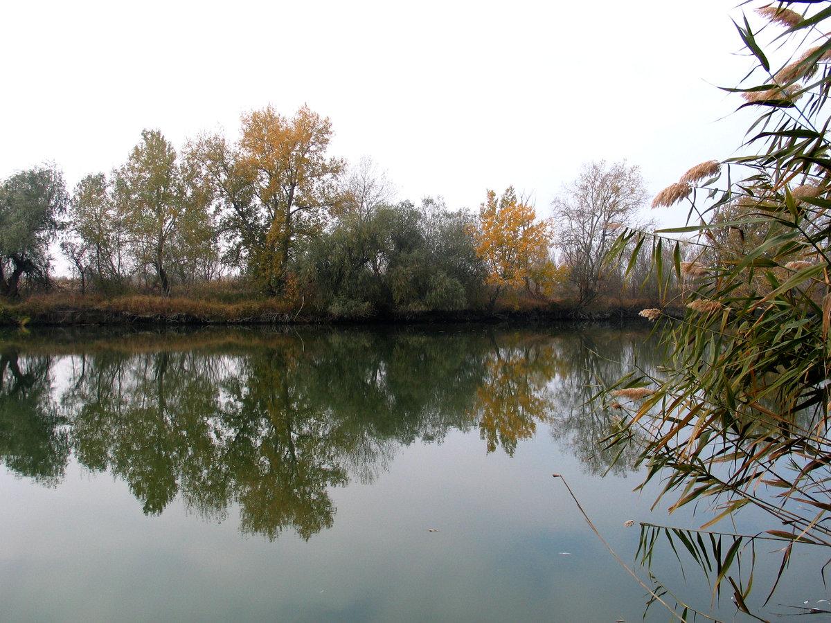 Речка турунчук рыбалка