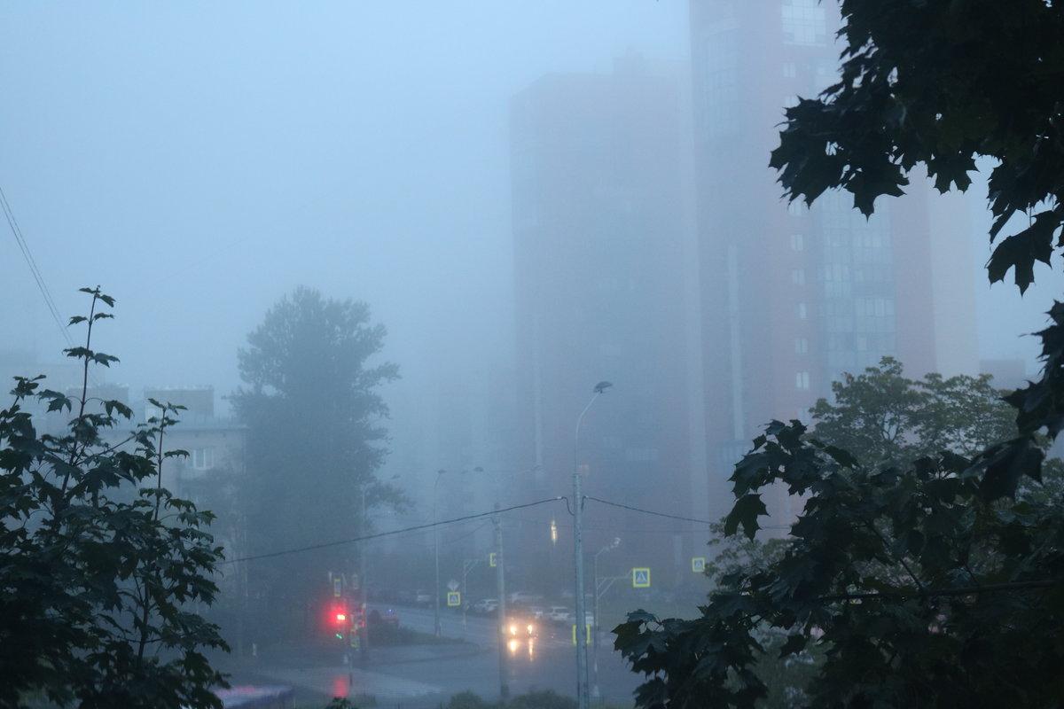 картинка тумана в городе если вас есть