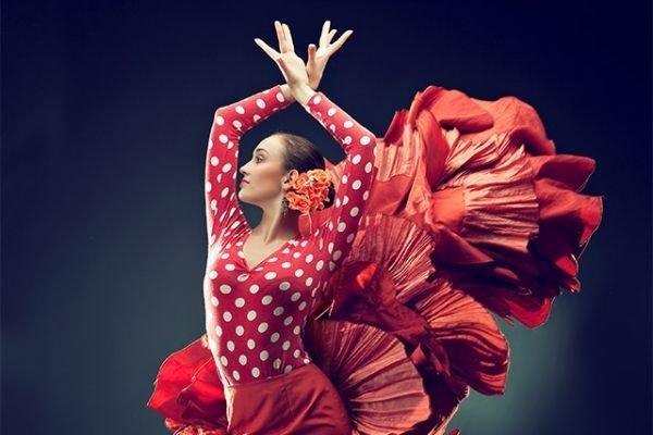 цветы фламенко картинки