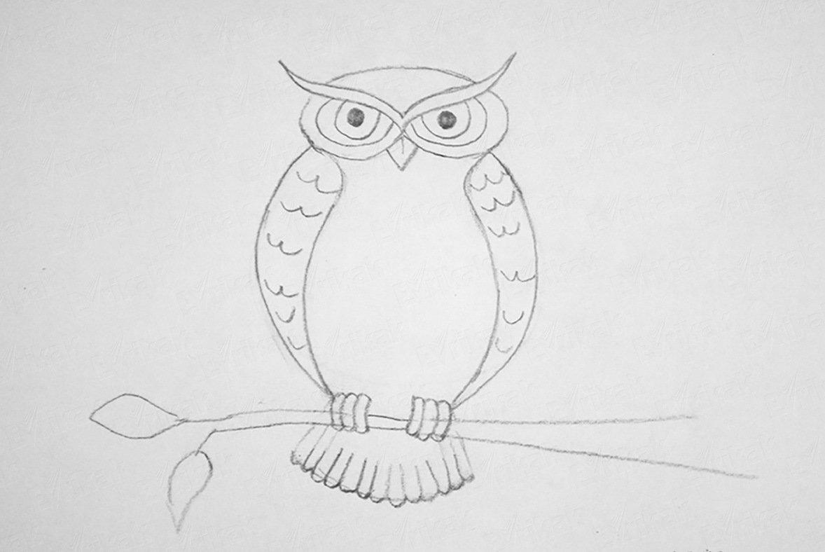 Сова рисунок как нарисовать
