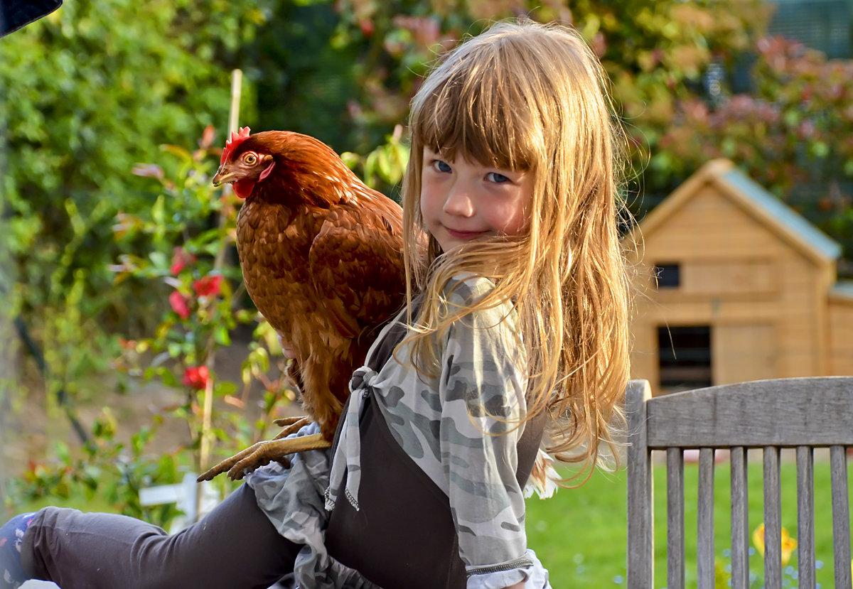 Девушки курицы картинки