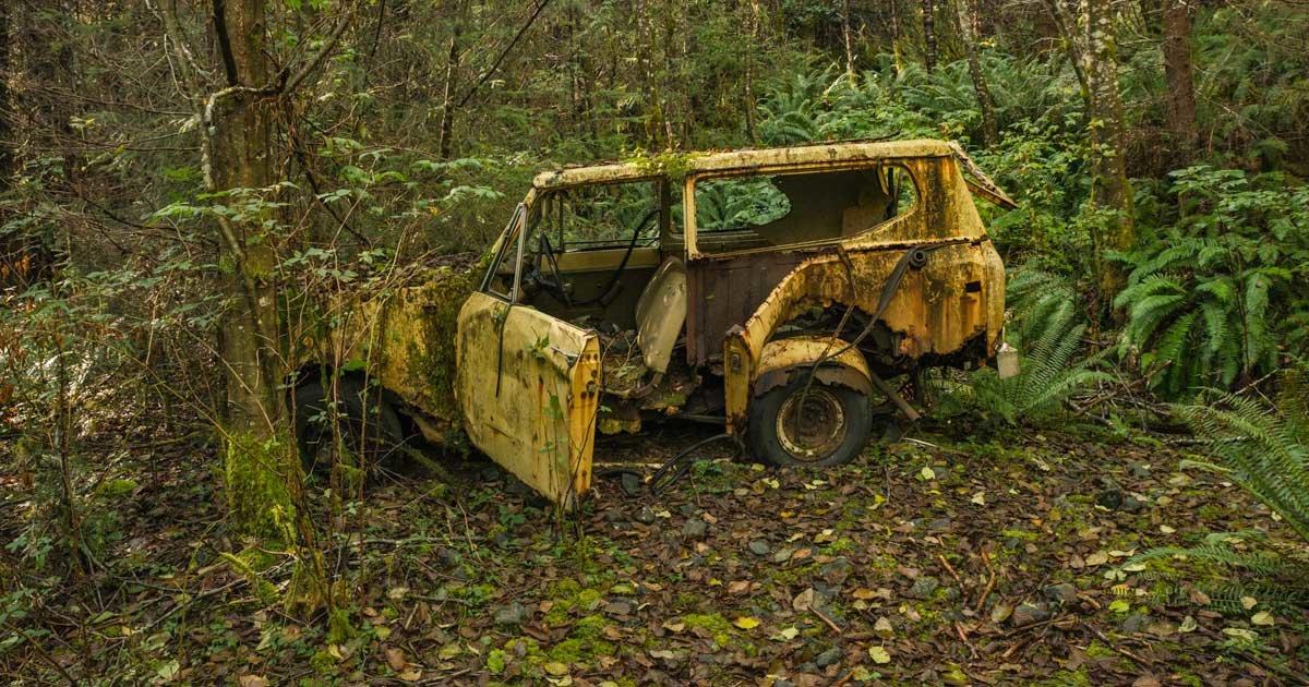 журналистов фото брошенных автомобилей в лесу второй озвучивает