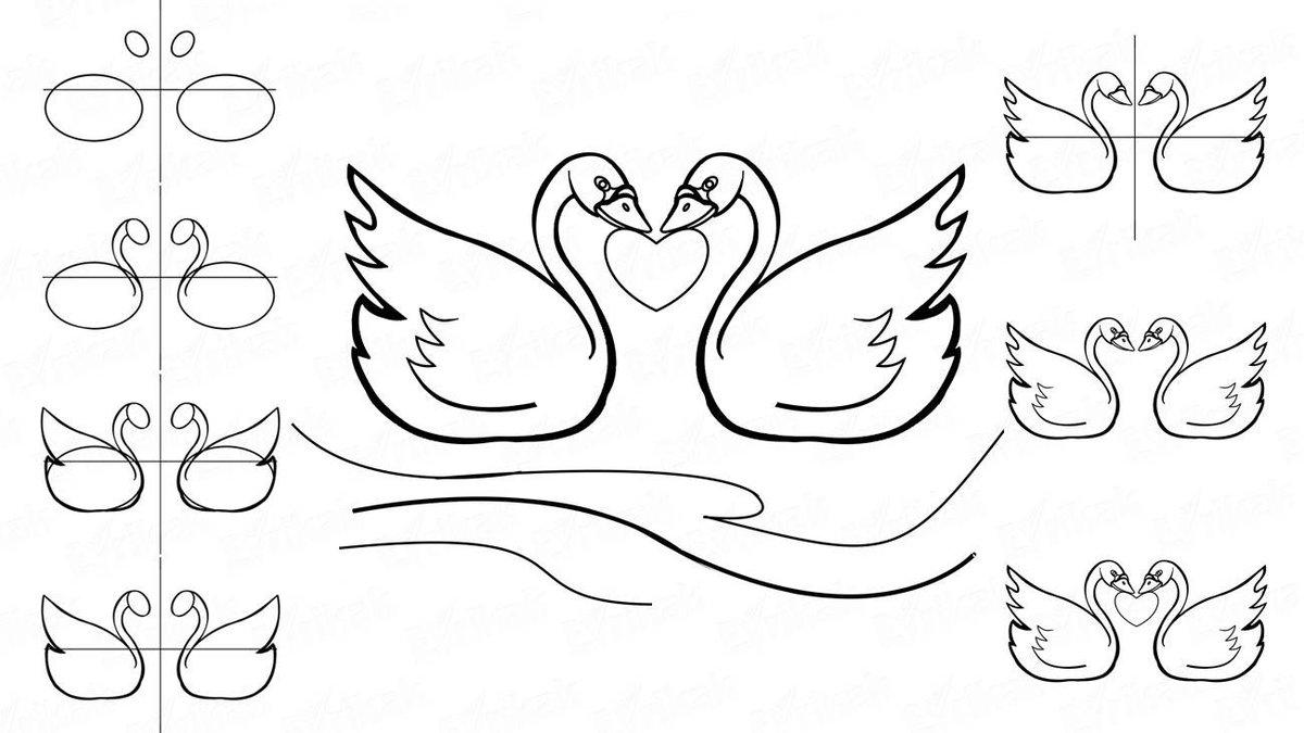 Два лебедя картинки карандашом, дома