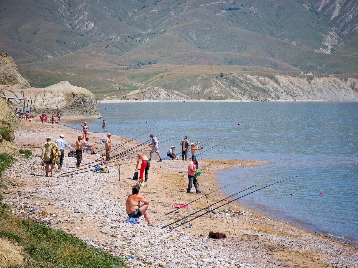 выходе рыбное в крыму фото способен
