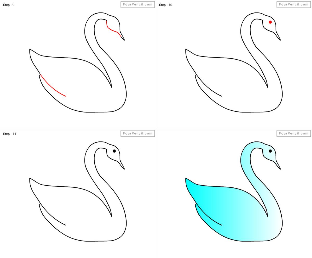 Рисунки лебедя карандашом для начинающих