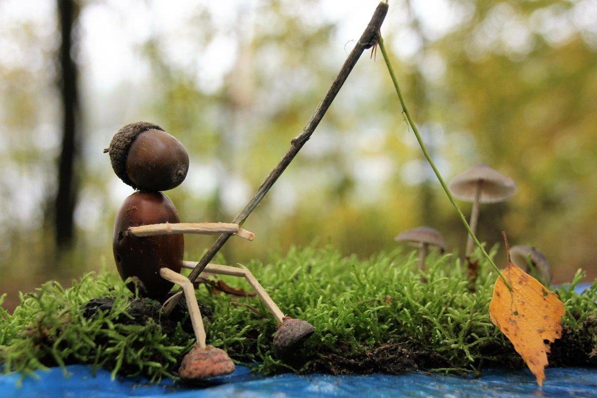 размягченное картинка грибов и желудей фильме около трех