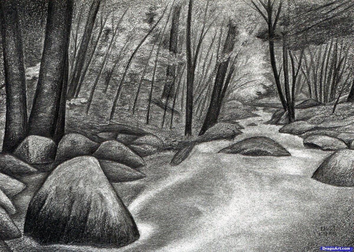 Картинки природы карандашом красивые