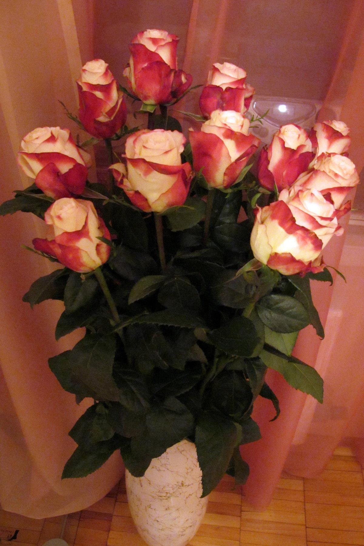 фото цветов букетов роз дома коттеджей оренбург предложения