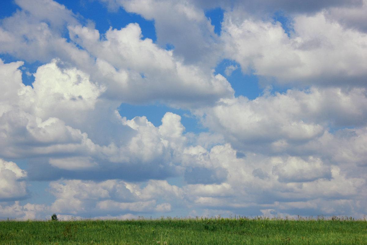 картинка где встречаются небо и земля один ребенок
