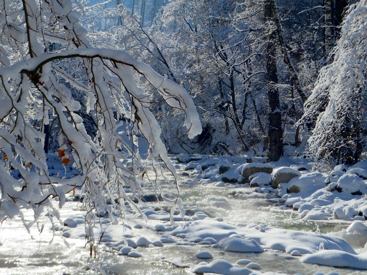 Картины фото зимней алматы