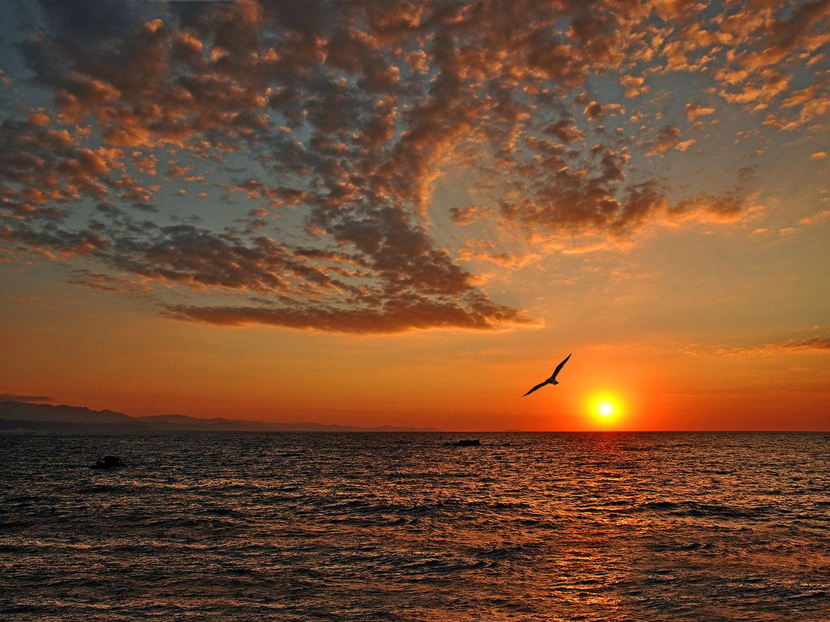 Как фотографировать восход солнца красиво ситуации