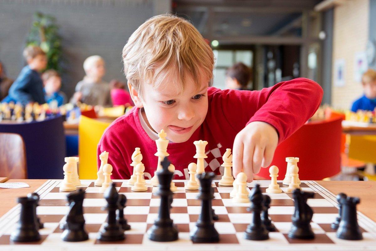 Шахматы обучение картинки