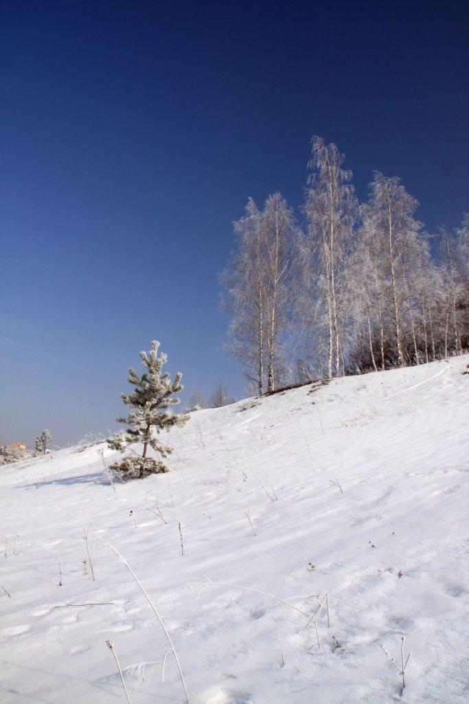 Зимняя сказка с бияваш фото