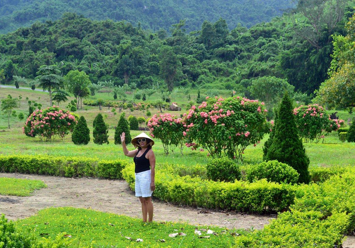 процессе этого растительность вьетнама фото можешь быть