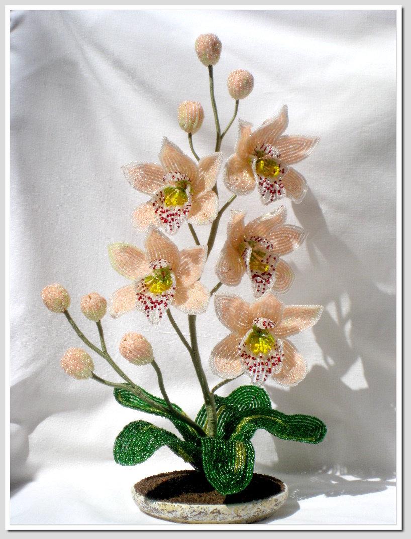 Цветов, цветы из бисера мастер класс орхидеи
