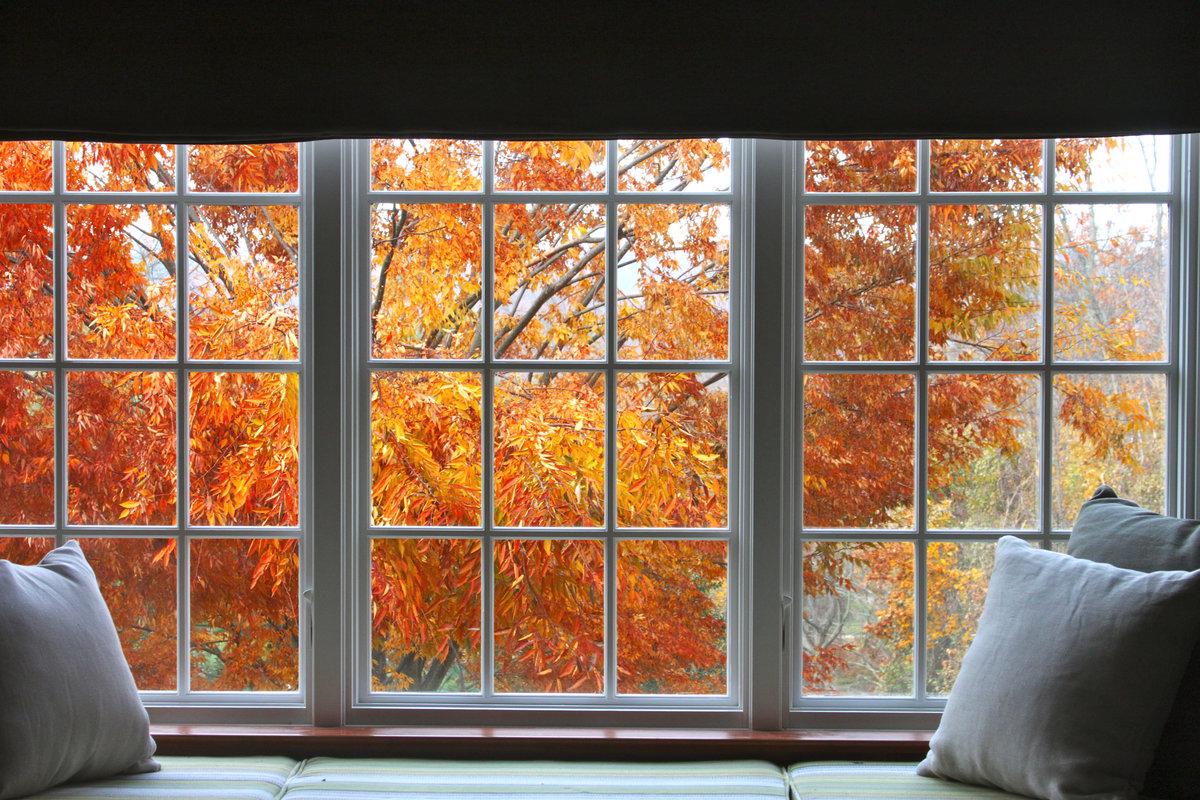 нам, картинки осень за окном называется человек, который