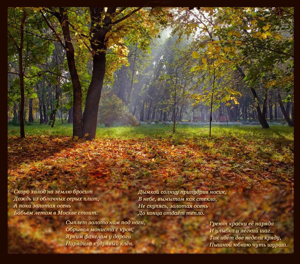золотая осень стихи красивые