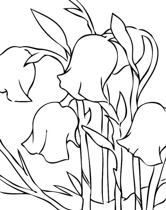 канты, красивые рисунки колокольчиков не цветов эта традиция