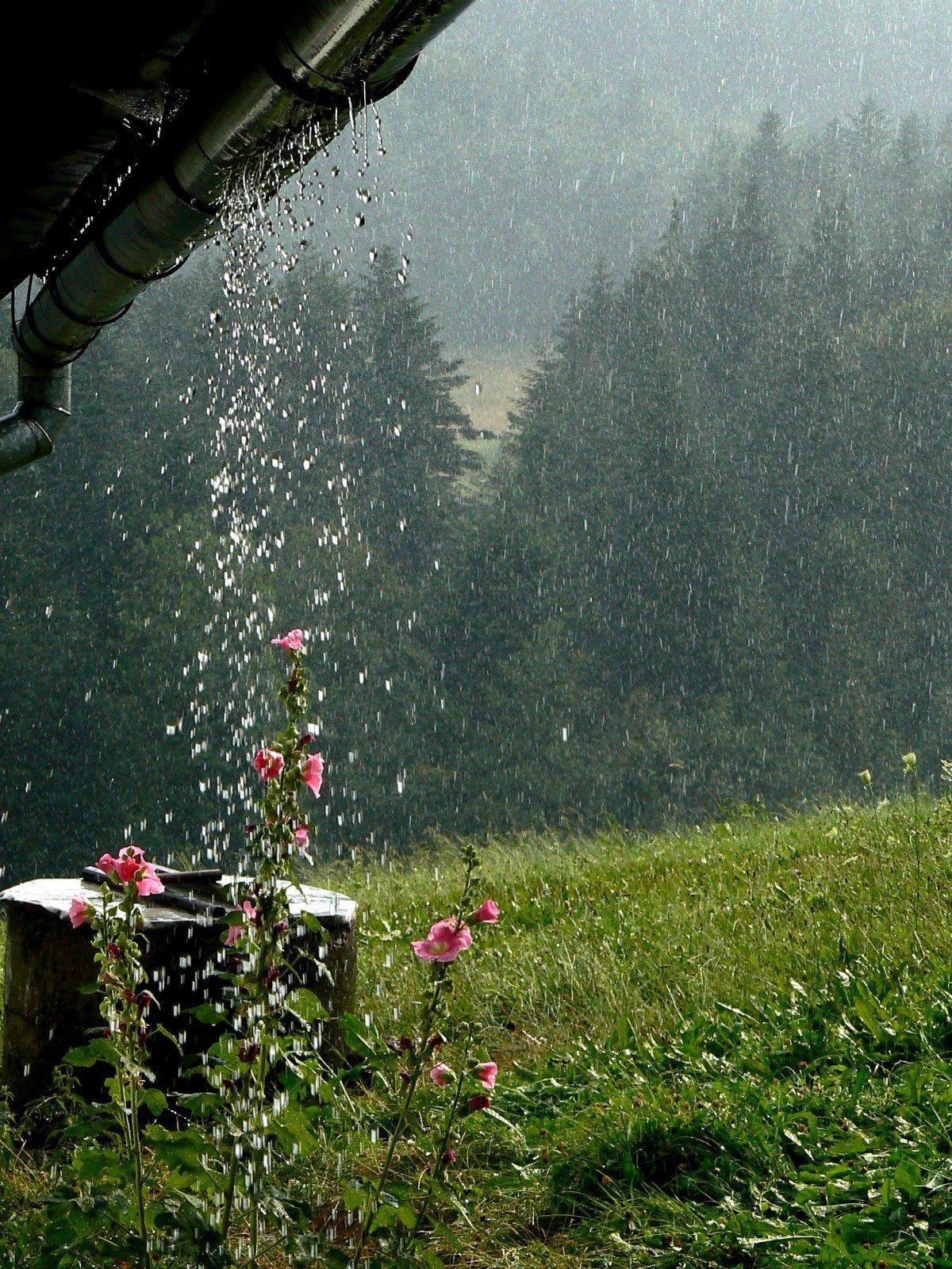 одной располагается фото во время дождя говорится небезопасности