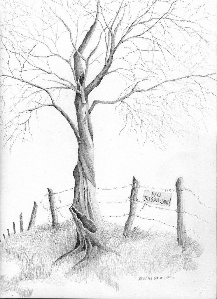 рисунки карандашом легкие и красивые пейзажи делается