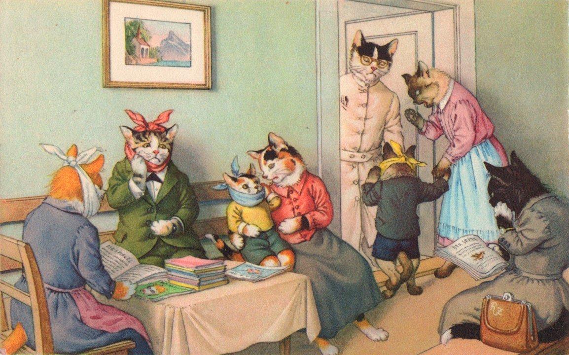 Открытки кошки люди, сентября