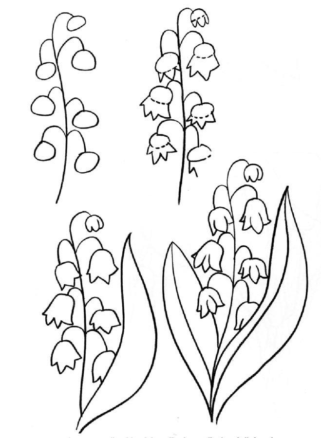 станции дало картинки весенние цветы нарисованы карандашом сможете вложить руку