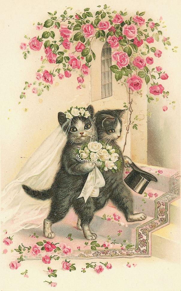 Животные на старых открытках