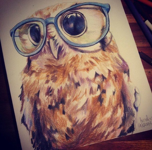 cute owl drawings - 610×599
